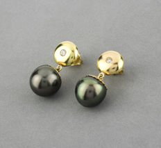 18 kt/750 yellow gold - Earrings - Tahitian pearls - Earring height 22.45 mm