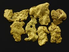 7 flat gold nuggets natural - 6.72 ct. total