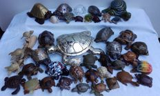 Collection of 42 turtles