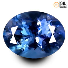 Tanzanite 1.60 Carat - No reserve price