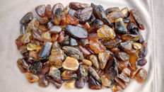 Colorful Baltic amber lot - 630 gr