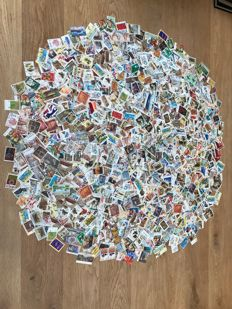 Australia – Batch of over 12,000 individual stamps
