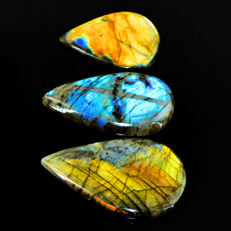Pear shape Big Labradorite lot - all color flashes - 435 ct - (3pcs)