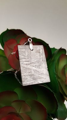 Seymchan slice with Sterling Silver chain - 35 x 24 x 3mm - 19.6 g