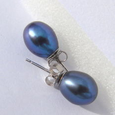 White gold 14 k Earrings with pearls Tahitian, gray  graphite  colours, dimensions 9mm/ 7,5mm classAA