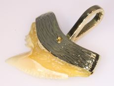 Shark tooth gold pendant from the sixties
