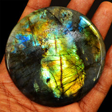 Round Rare Flash Labradorite Big Cabochon  - 68x08x08 mm - 355 ct