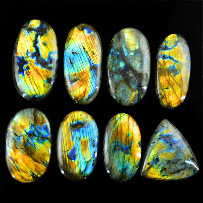Premium Big Labradorite lot - all color flashes - 1575 ct - (8pcs)