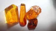 Baltic amber with insects and inclusions 12-26 mm (4)