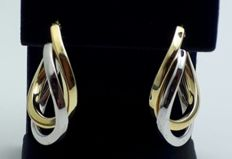 14 Ct Two Tone Gold Earrings