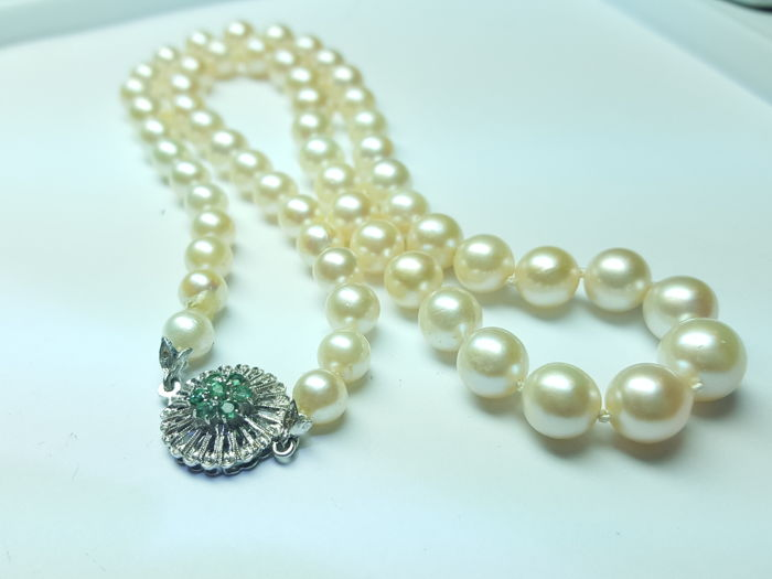 Necklace with Akoya pearls in decreasing size, 6–9.5 mm, with 18 kt white gold clasp and emeralds - Length 38.5 cm