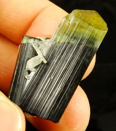 Beautiful Tourmaline twin crystals - Green Cap - 3,5 x 2,5 x 2.0 cm - 13,21gm