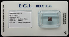 0.86 ct Certified Fancy Purple Grey Diamond  - NO RESERVE