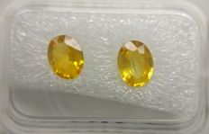 Couple Sapphire Intense Yellow 1.51 ct         No Reserve Price