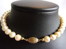 Antique pearl necklace with 14 kt yellow gold clasp