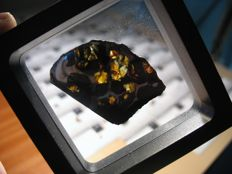 Meteorite Pallasite (nickel/iron matrix + gemmy olivines) - Seymchan - Slice 8.40gm