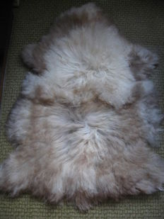 Fine, natural Icelandic Sheep skin - Ovis aries - 107 X 70cm
