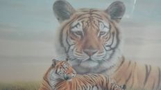 Bengal Tiger in limited edition original certified with logo coated with 24 karat gold