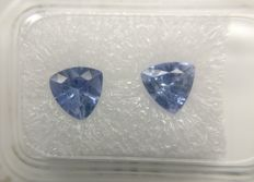 Couple Sapphire Light Blue 1.66 ct         No Reserve Price