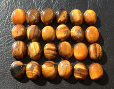 Tiger's Eye - untreated Cabochons - 11 to 12 mm - 95ct (24)