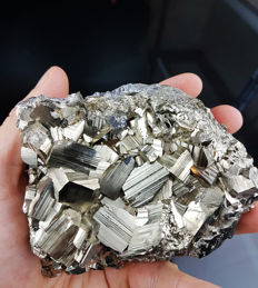 Large lustrous penta-dodecahedron pyrite 11 x 7 x 5 - 1240 g
