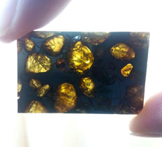 Brahin Meteorite with rounded olivines - Top pallasite - 10.4g