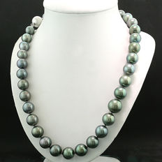 Tahitian pearls necklace of approx. 10-13 mm diameter, 585 - white gold ---no reserve price---