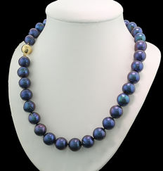 Cultivated pearl necklace of violet-blue freshwater cultivated pearls 10-12 mm 585 gold ---no reserve price---
