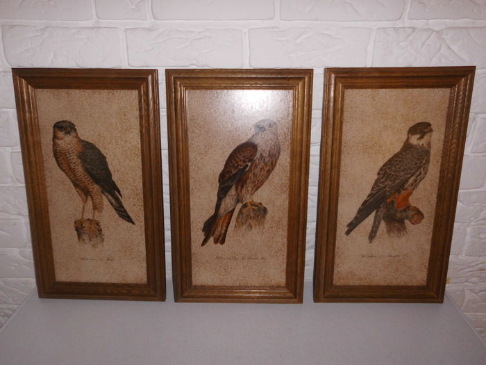 3 images of birds of prey on a large ceramic tile, in solid oak frame, very special and rare!