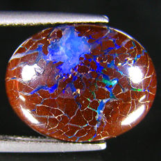 Stunning Color Play  Australian Boulder  Opal   -  8.36  Ct
