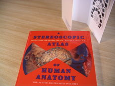 View-Master Stereoscopic Atlas of Human Anatomy With 12 reels. Plus 3 additional reels.