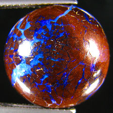 Amazing  Color Play  Australian Boulder  Opal   -  11.33  Ct