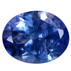Tanzanite 0.46 Carat - No reserve price