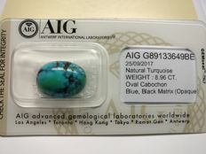 Turquoise Blue & Black Matrix ( Opaque ) 8.96 ct    No Reserve Price