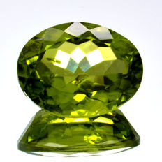 Peridot - 5.02 ct - No Reserve Price