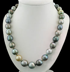 Multicoloured Tahitian pearl necklace, 11.6 to 15.0 mm, 585 white gold ---no reserve price---