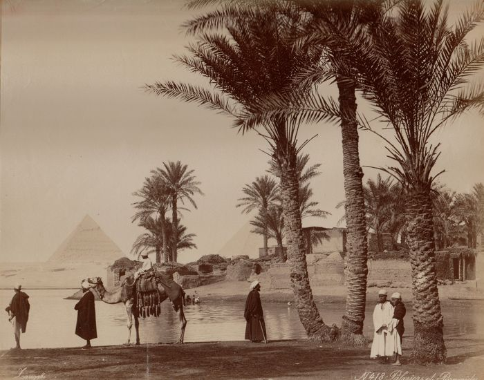 C. & G. Zangaki (active 1870-1880) - Oasis and pyramids of Giza, Egypt