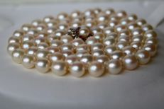 Very long pearl necklace with genuine sea/salty Japanese Akoya pearls (7,1-7.6mm.) and white Gold flower clasp with natural Rubies