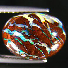 Excellent Quality Good Fire Australian Boulder  Opal With Rainbow Flash  - 8.98 ct