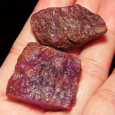 Natural Unheated Star Ruby Specimen Rough - 211,3 ct