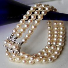 "3-strand bracelet from the ""Schoeffel"" brand, with 81 genuine Japanese Akoya pearls with marvellous lustre, approx. 5.8 mm"