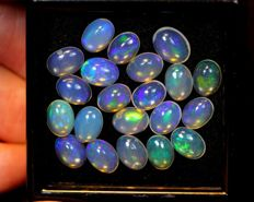 Lot Natural Solid Opal - 10.4 ct ( 21 )
