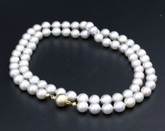 Silver/white pearl necklace with 14 kt yellow gold clasp