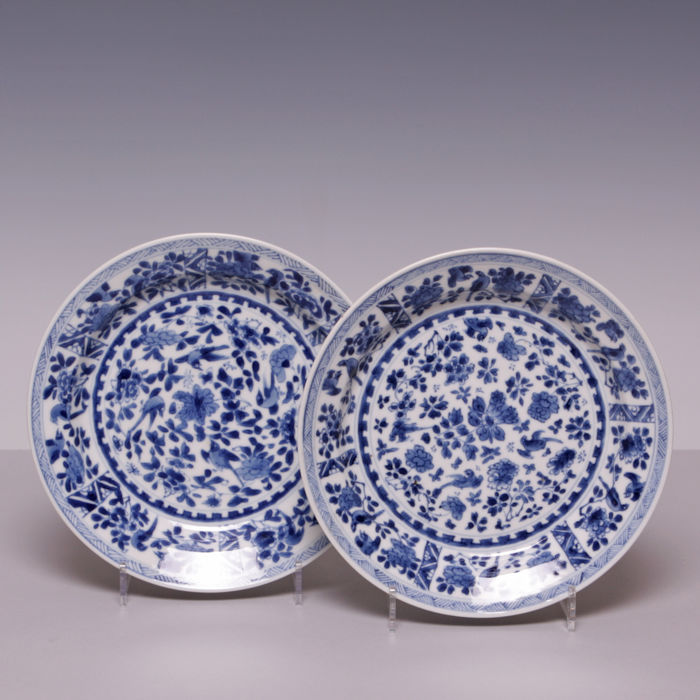 Beautiful pair of blue and white porcelain plates, décor of flowers and birds - China - 18th century (Kangxi period).