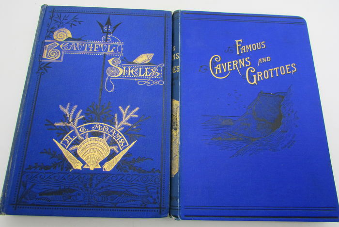 Lot of 2 books about the seashore - 1871/1890