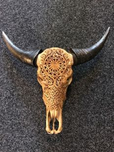 Balinese Water Buffalo skull - carved and patinated - Bubalus bubalis - 65 x 53cm
