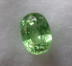 Tsavorite – 1.85 ct – No Reserve Price