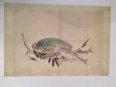 Watercolor depicting a composition of fish and an abalone - Japan - 1880s