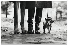 Elliott Erwitt (1928-) - Felix, Gladys and Rover, 1974