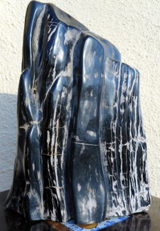 Decoration; Petrified Wood - 30 cm - 10.8 kg